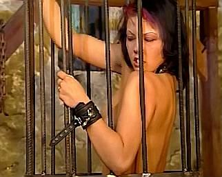 slavin probeert zich los te maken uit stalen kooi